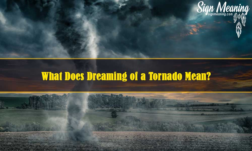 What-Does-Dreaming-of-a-Tornado-Mean