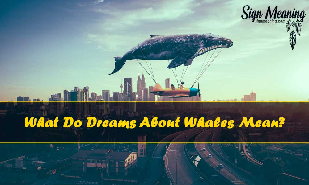 what do dreams about whales mean