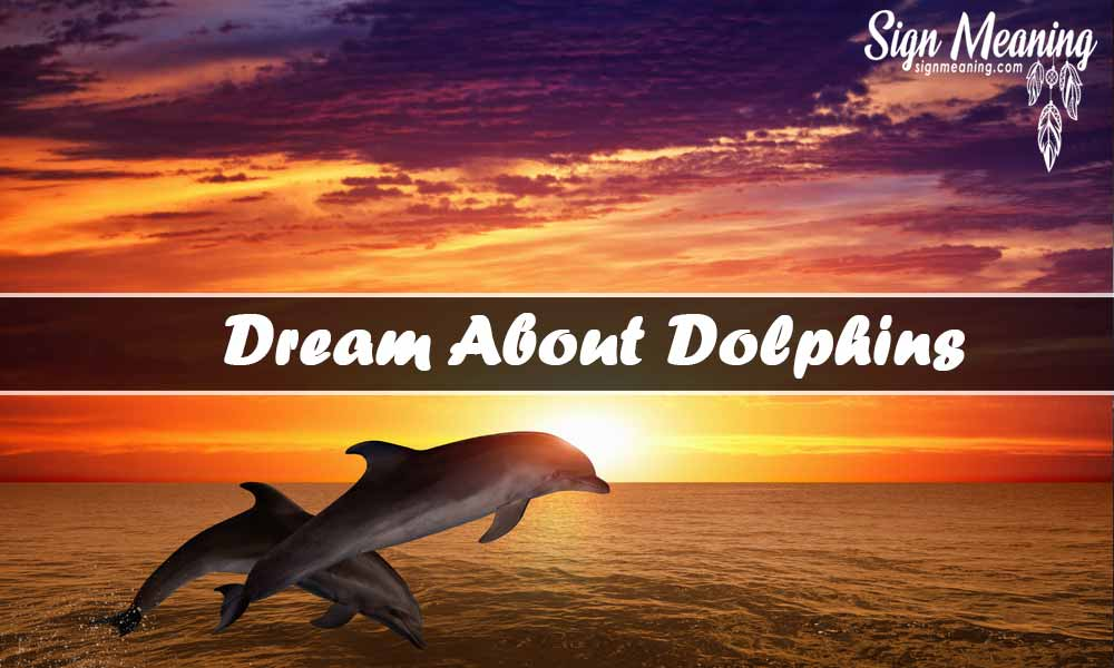 dream about dolphins