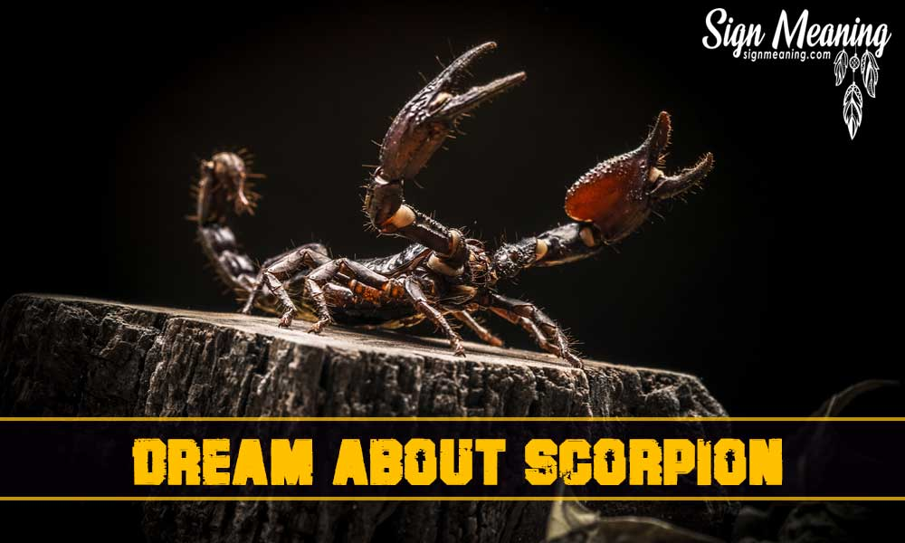 dream about scorpion