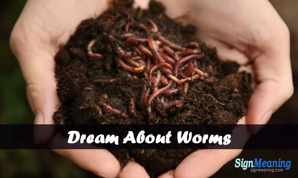 dreams about worms