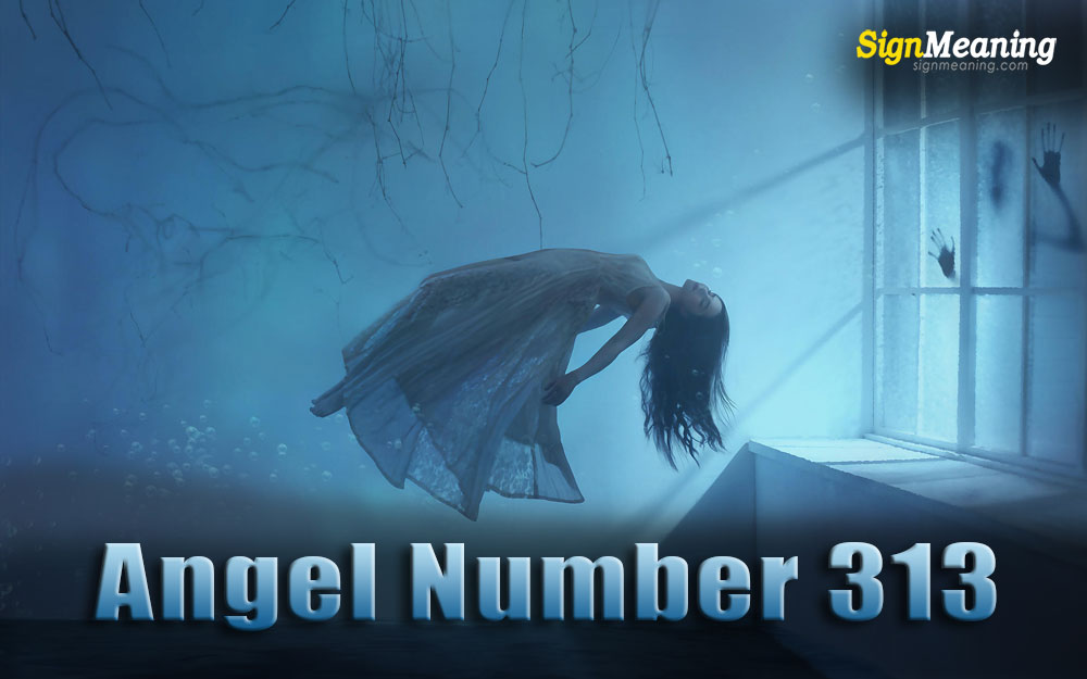 angel number 313